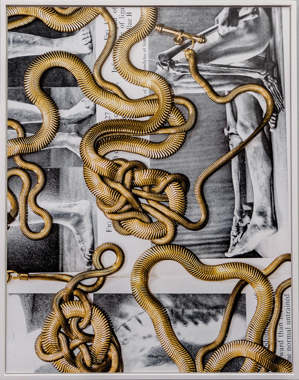 Lucia Sotnikova, Epimorpha , Art print, 90x70cm, 4+2AP, 2019